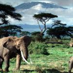 Достопримечательности Танзании