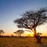 Страны Африки для туристов