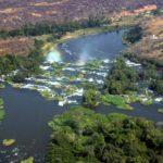 Тропический лес экосистемы реки Конго