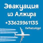 Срочно из Алжира – эвакуация на частном самолете